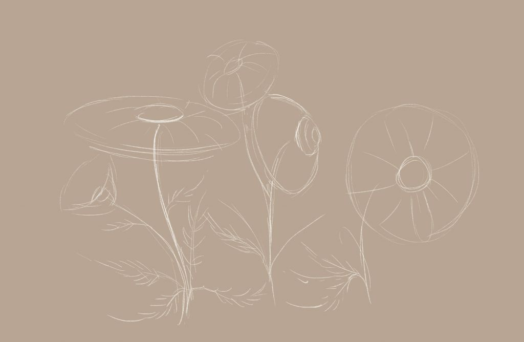 how to draw, how to draw, art lesson, how to draw a flower