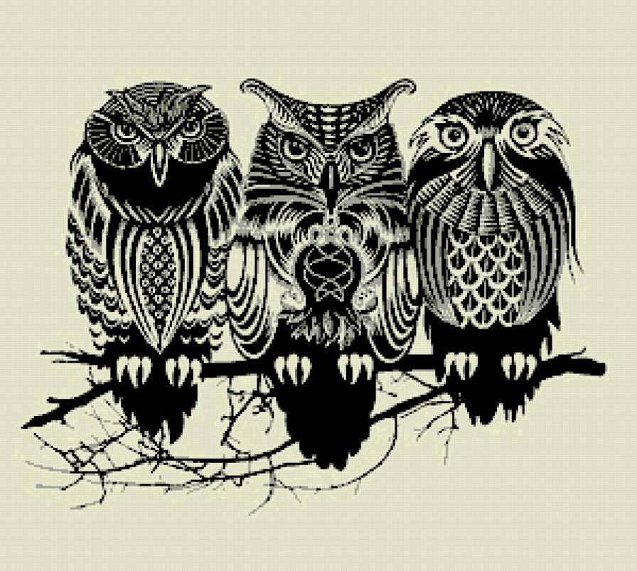 picture of owls, how to draw an owl