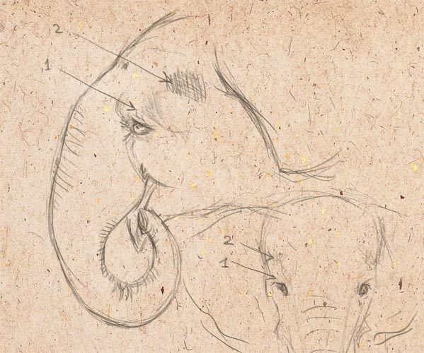 how to draw elephants, art lesson, how to paint animal