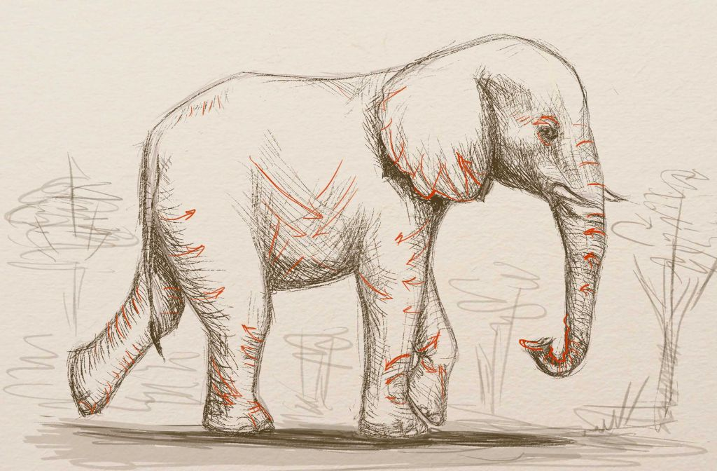 skin of elephants, art lesson, how to draw, how to draw elephant, how to paint animal