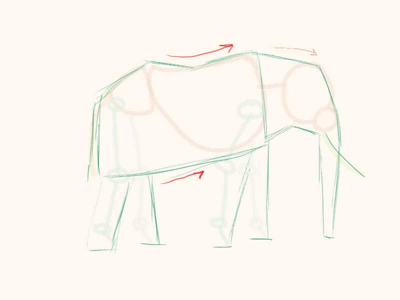 how to draw elephant, how to paint elephant, art lesson, how to draw animals