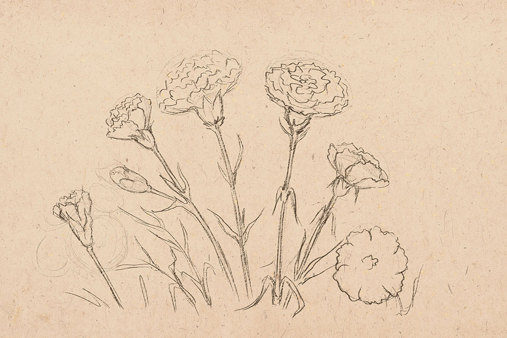 how to draw flower, how to draw, to draw flowers, art lesson