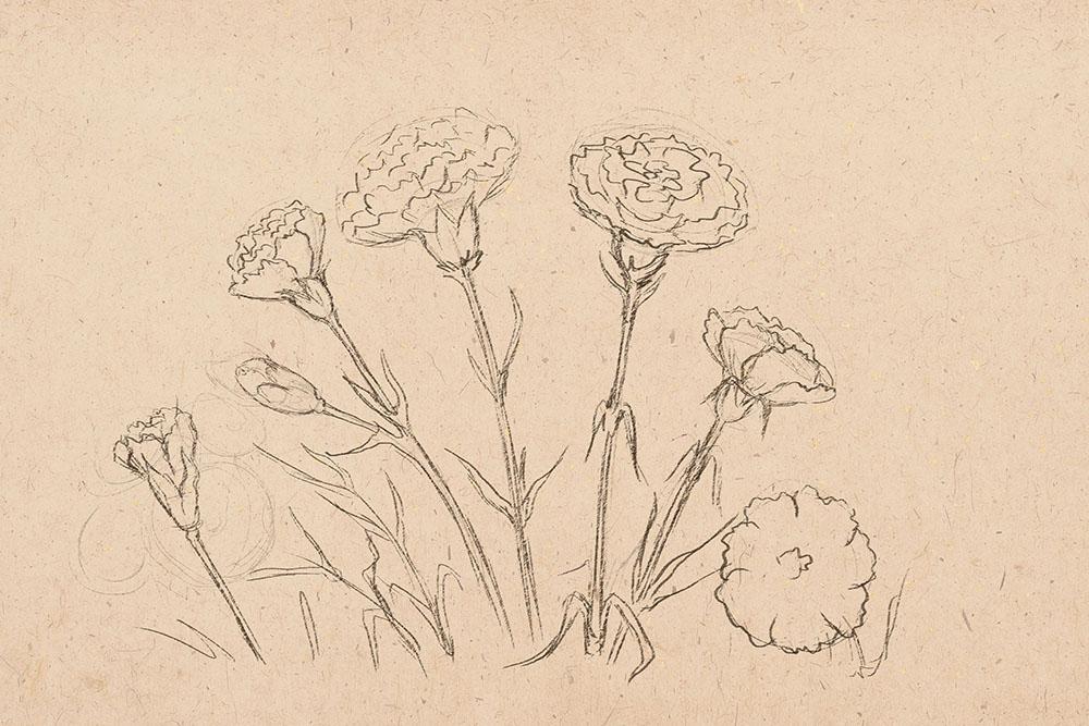 how to draw flower, how to draw, to draw flowers, art lesson
