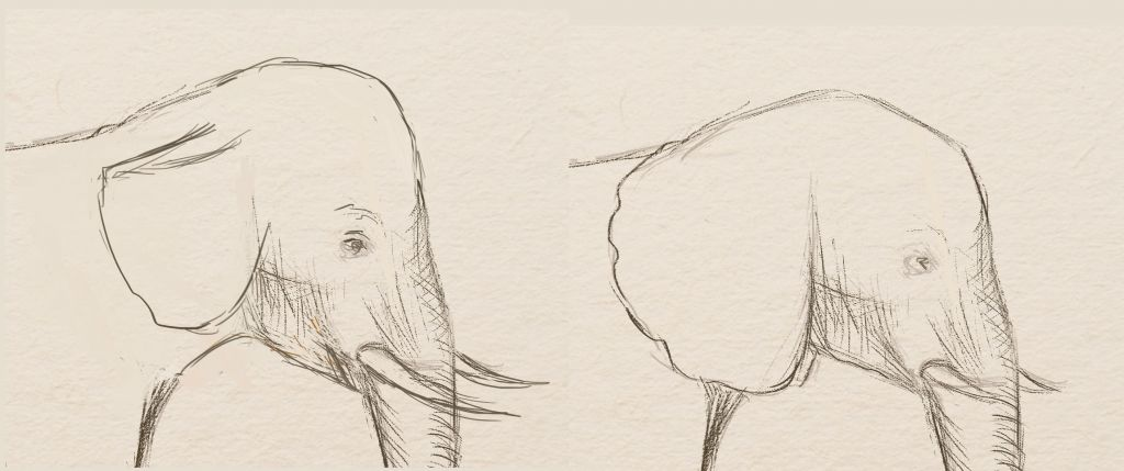 how to draw, art lesson, how to draw elephants, paint animals