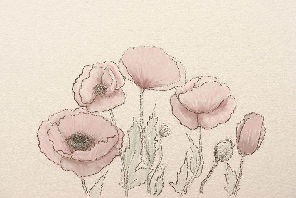 Mak skech1g how to draw art lesson draw flower step by step mightylinksfo