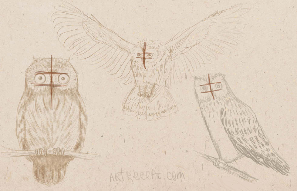 how to draw owl, how to paint a bird, art lesson