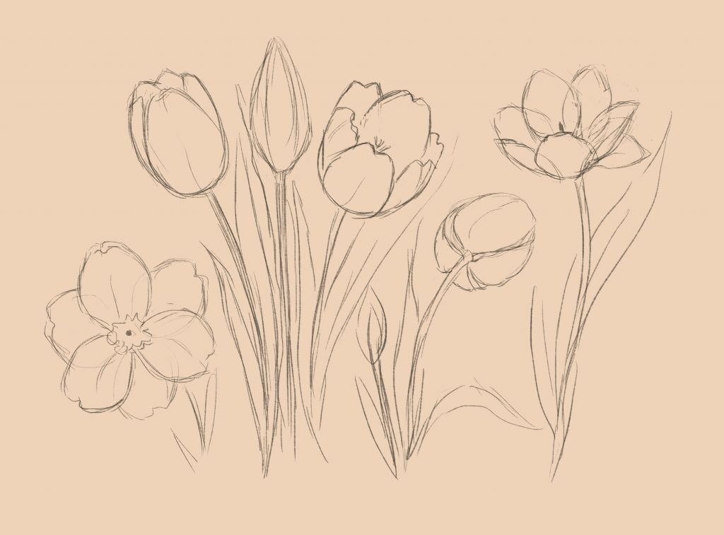 art lesson how to draw flowers art lesson for beginner how to draw
