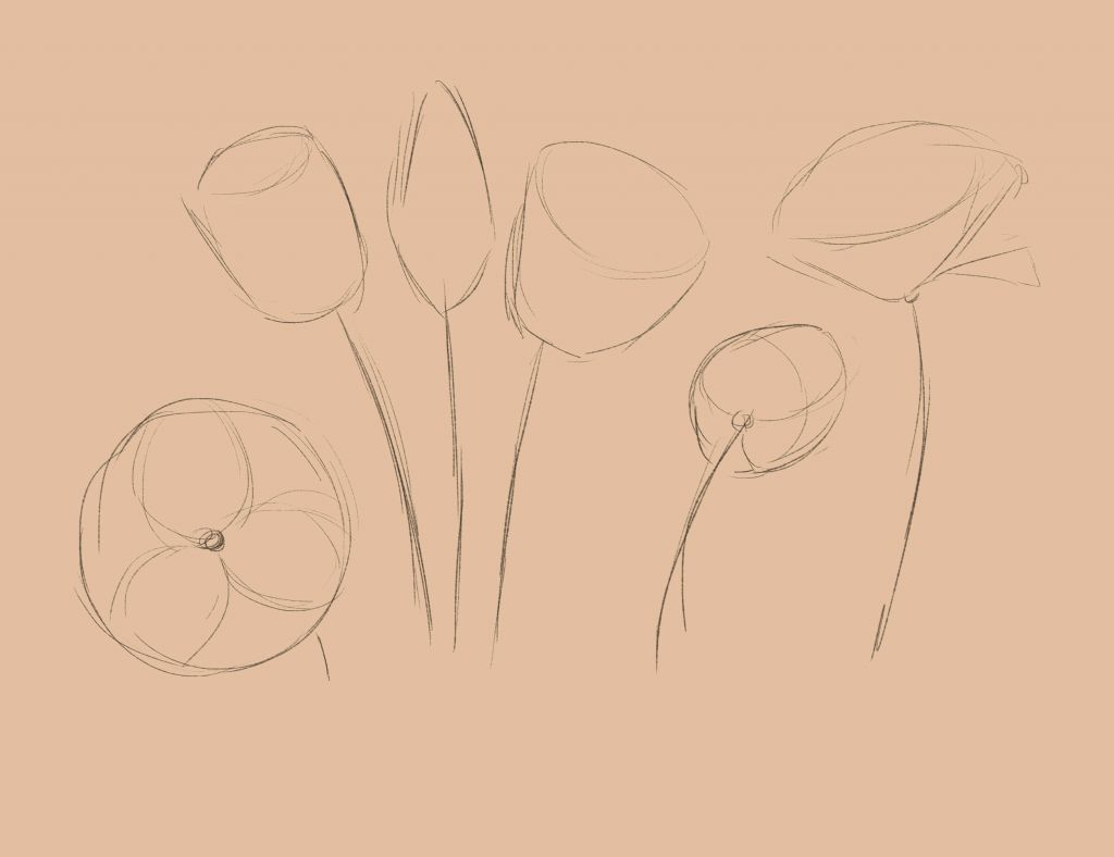 how to draw, art lesson, how to draw tulip