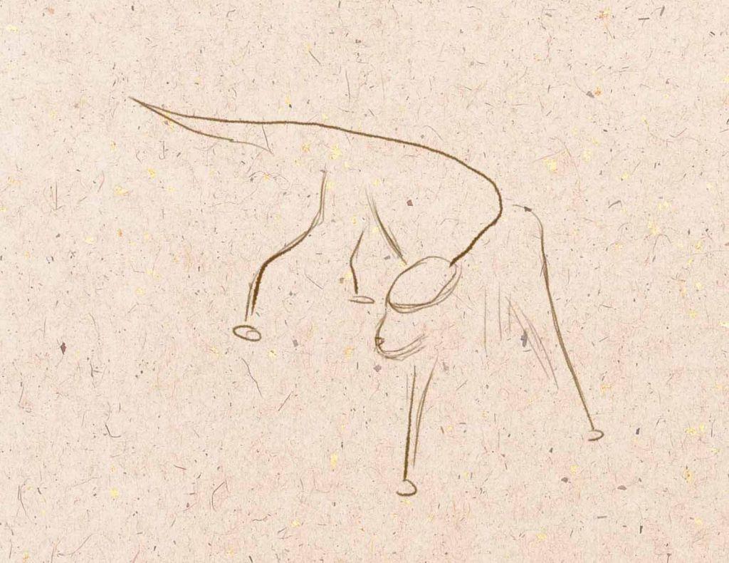 how to draw a dog, how to paint a dog, to draw a dog step by step