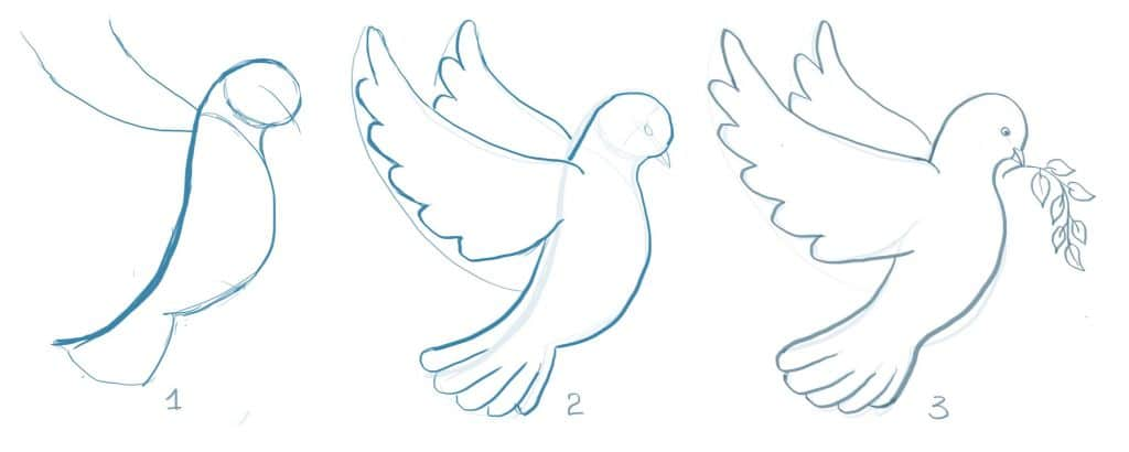 how to draw a dove step by step, art lesson for beginner