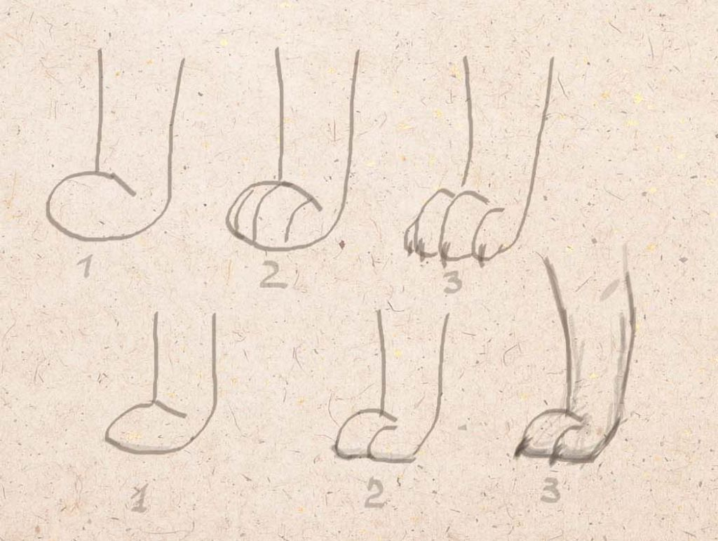 how to draw a dog, how to draw a animal, to draw a dog step by step